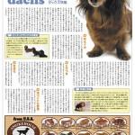 毎日ペット新聞P7